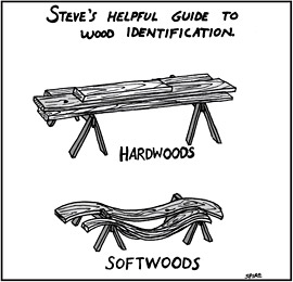 Hard & Softwoods